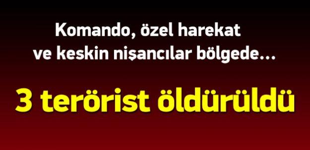 Sur ve Yenişehir'de terör örgütüne operasyon