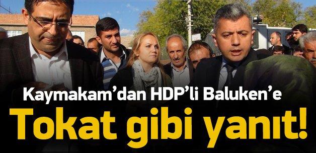 Kaykaman'dan HDP'li vekile tokat gibi cevap