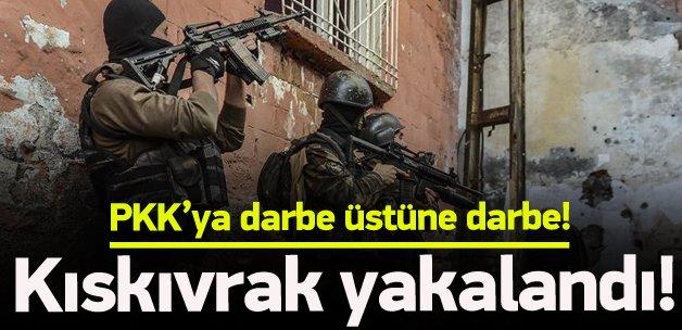 PKK'nın Ceylanpınar sorumlusu yakalandı