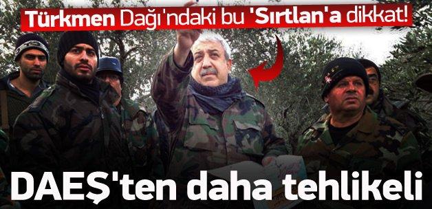 Türkmen Dağı'ndaki bu 'Sırtlan'a dikkat