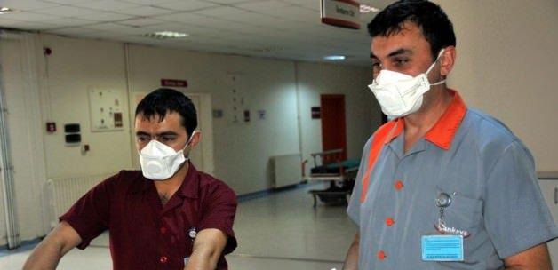 Ankara ve Van'da domuz gribi salgını