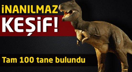 Dinozorların ayak izleri bulundu