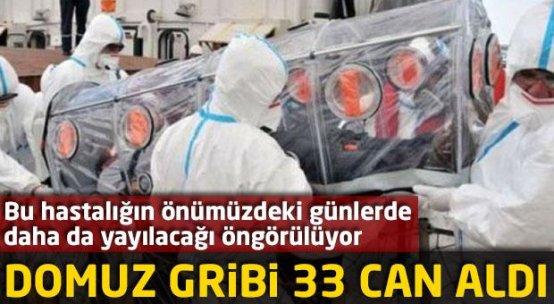 Domuz gribi: 33 ölü