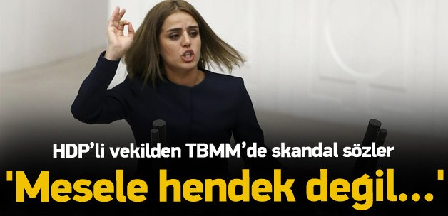 HDP'li vekilden Meclis'te skandal Kürdistan çıkışı