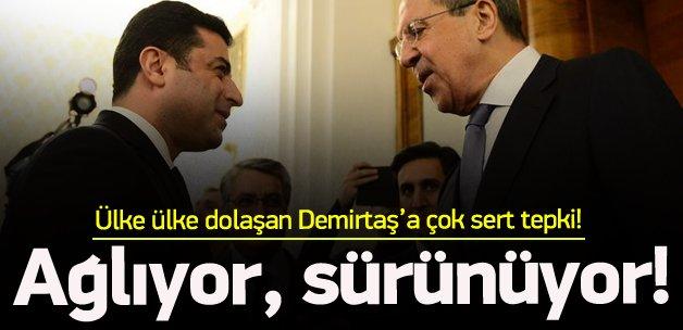'HDP'nin lideri ağlıyor, sürünüyor'