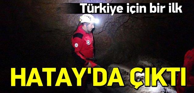 """Türkiye'nin ilk """"lav tüpü mağarası"""" bulundu"""