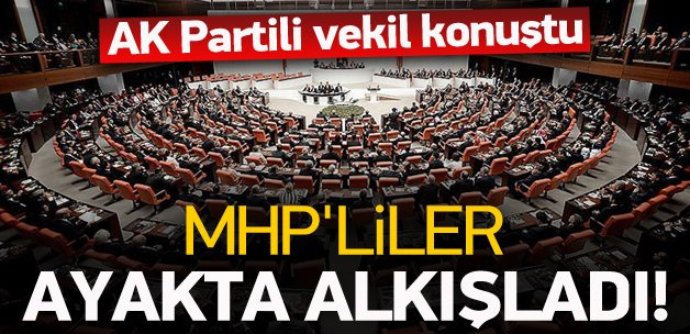 AK Partili vekili MHP'liler ayakta alkışladı