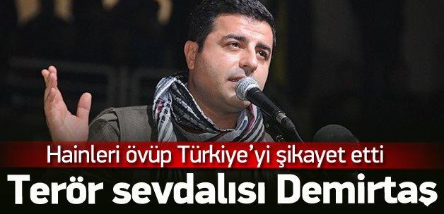 Demirtaş bu kez Fransa'da Türkiye'yi şikayet etti