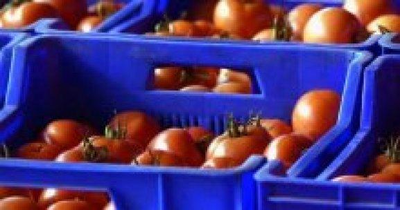 Fırtına sebze ve meyve fiyatlarını yükseltmedi