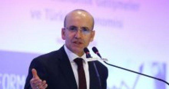 Mehmet Şimşek'ten kredi açıklaması