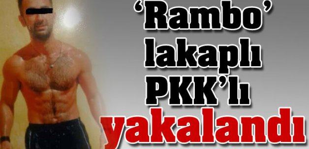 'Rambo' lakaplı PKK'lı yakalandı