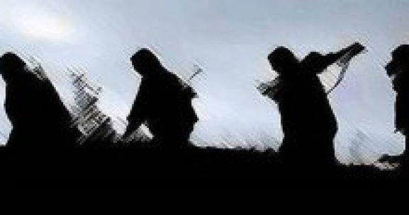 Şırnak'ta Tam 1143 PKK'lı teslim oldu