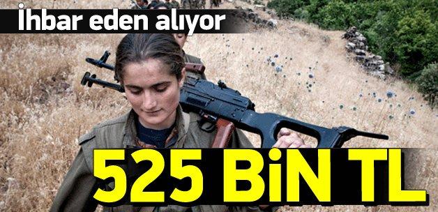 Teröristleri ihbar eden 3 kişiye 525 bin lira