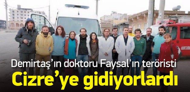 Demirtaş'ın doktoru Faysal'ın teröristi