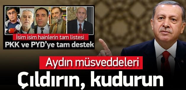 Erdoğan: Aydın müsveddeleri kudurun