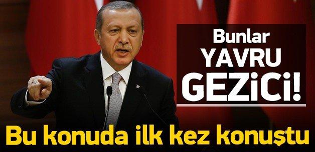 Erdoğan'dan Cerattepe tepkisi!
