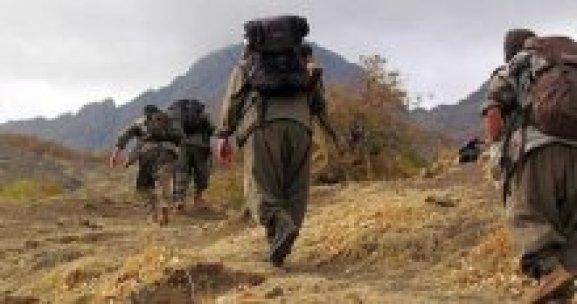 Mardin'de çatışma! 2 PKK'lı öldürüldü