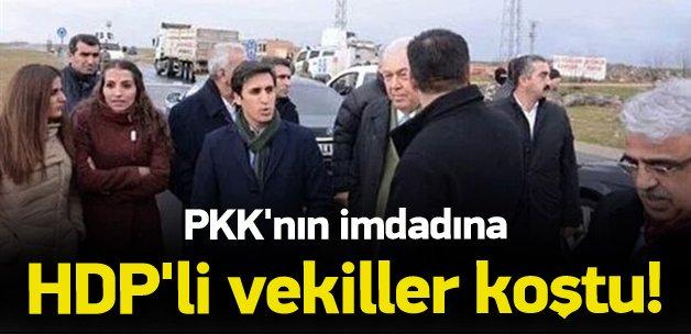 PKK'nın imdadına HDP'li vekiller koştu !
