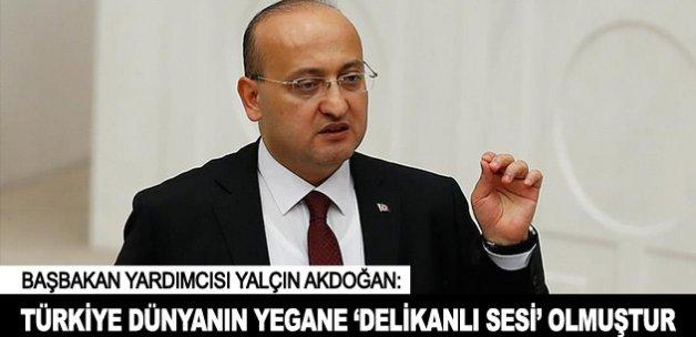 """""""Türkiye dünyanın yegane 'delikanlı sesi' olmuştur"""""""