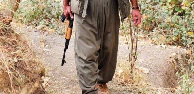 Aranan PKK'lı yol kontrolünde yakalandı