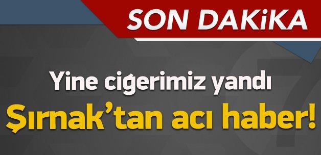 Bir acı haber de Şırnak'tan geldi: 2 şehit!