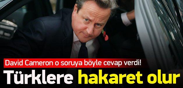 David Cameron: Türklere hakaret olur