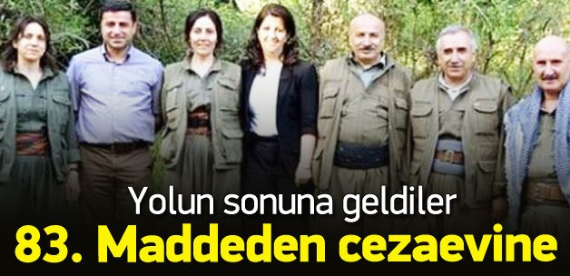 HDP'li vekiller için 83. Madde formülü