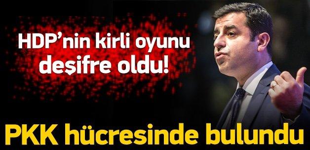 HDP'nin sahte oyu hücre evinden çıktı!