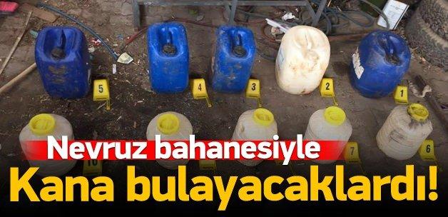 PKK Mardin'i kana bulayacaktı