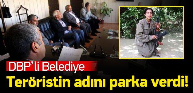 PKK'lı teröristin adını parka verdiler!