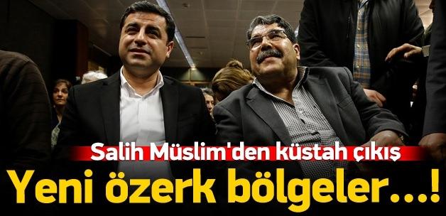 Salih Müslim'den yeni özerk bölge açıklaması