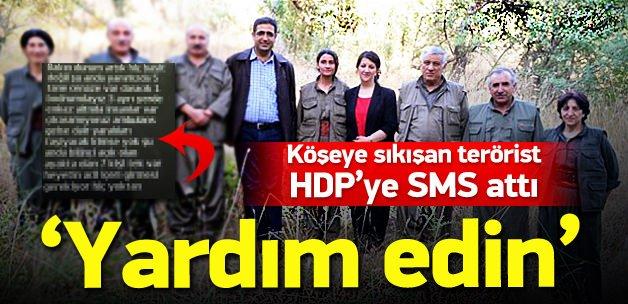 Terörist HDP'li vekilden SMS'le yardım istedi