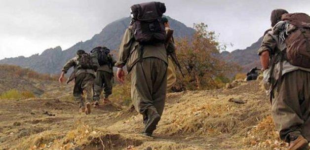 Teröristlerin 4 sığınağına girildi