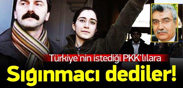 Türkiye'nin istediği PKK'lılara sığınmacı dediler!