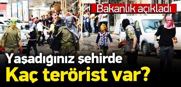 Bakanlık açıkladı! Hangi kentte kaç terörist var?