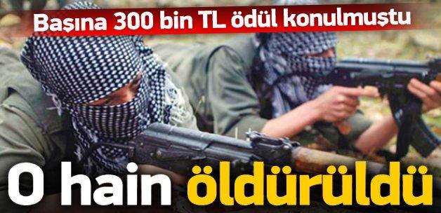 Başına 300 bin TL ödül konulmuştu, öldürüldü