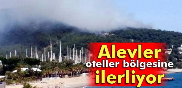 Bodrum'da orman yangını otellere doğru ilerliyor