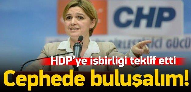 CHP'li Böke'den HDP'ye: AKP'ye karşı cephe olalım