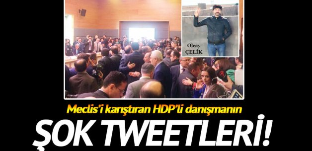 HDP'nin PKK'lı danışmanı!
