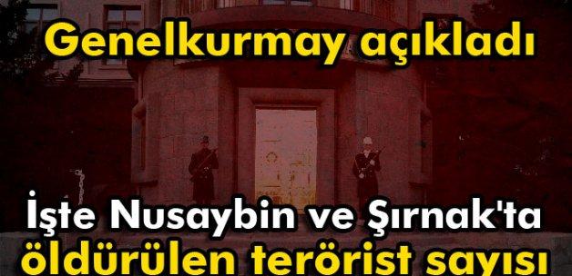 İşte Nusaybin ve Şırnak'ta öldürülen terörist sayısı