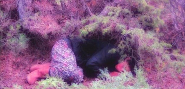 Kayıp kadın, ormanda baygın bulundu