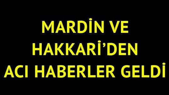 Mardin ve Hakkari'den acı haber!