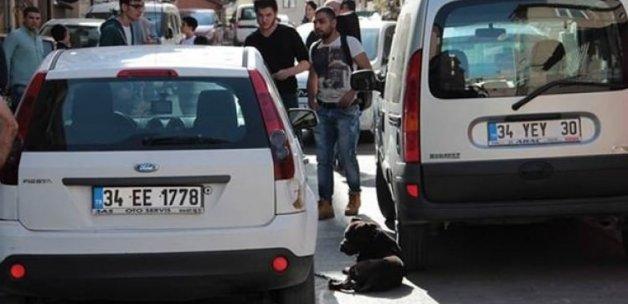Üsküdar'da dehşet: Pitbull saldırdı