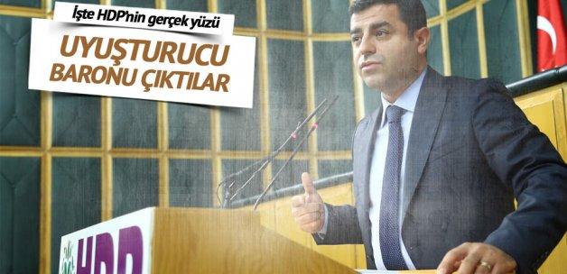 Uyuşturucu baronları HDP'li çıktı