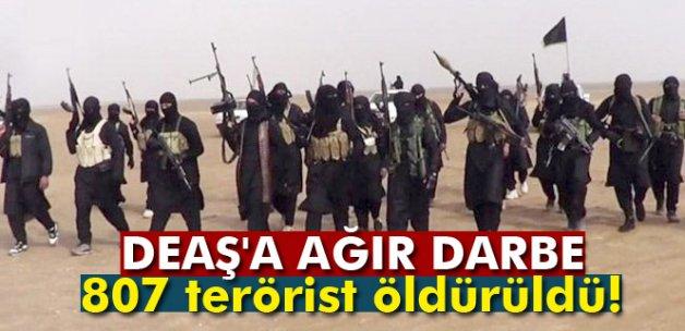 807 DEAŞ'lı öldürüldü