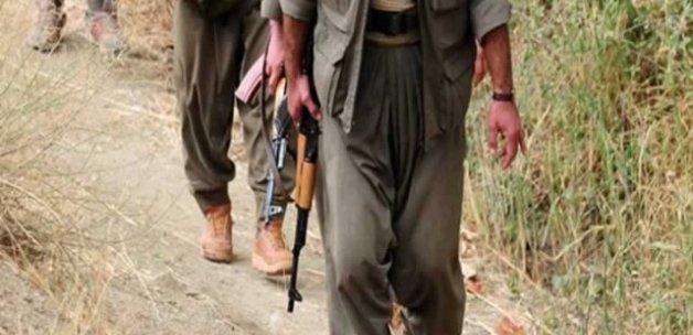 Çukurca'da 11 terörist yakalandı