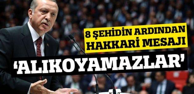 Cumhurbaşkanı Erdoğan'dan Hakkari mesajı