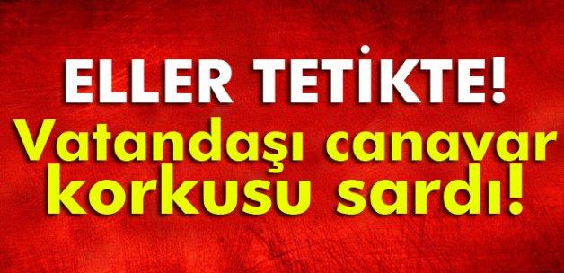 İzmir'de eller tetikte, köylüler canavar nöbetinde