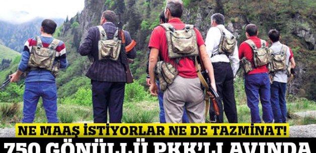 Karadeniz'de 750 gönüllü korucu PKK'lı avına çıktı