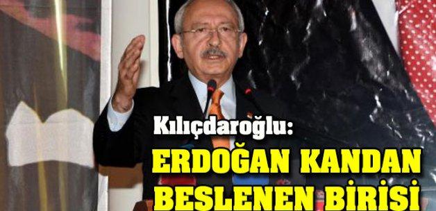 Kılıçdaroğlu: Erdoğan kandan beslenen birisi